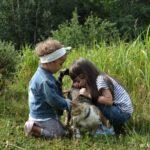 10 korzyści dlaczego dziecko powinno mieć kontakt ze zwierzętami