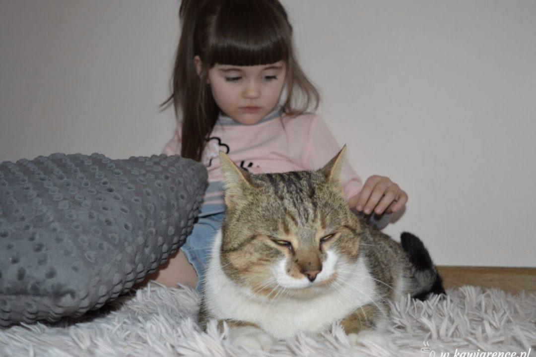 kot i dziecko plusy posiadania kota