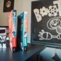 Polecane książki dla dzieci 10 lat - Przygody Robota - seria książek dla dzieci od 7-12 lat - BOOT wielka przygoda małego robota